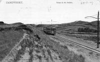 Duinen Zandvoort 1907