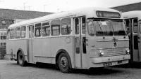 Haarlem 1968